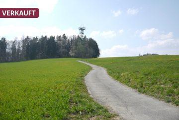 DREIZLER – Zum Selbstbezug oder Kapitalanlage! Grüne Aussichten in Bestlage von Markdorf, 88677 Markdorf, Erdgeschosswohnung